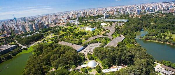 Roberto Burle Marx: Ibirapuera