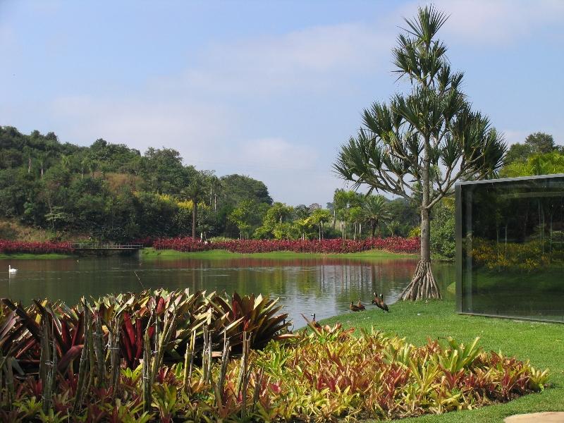 paisagistas-brasileiros-luiz-carlos-orsini-inhotim-lago