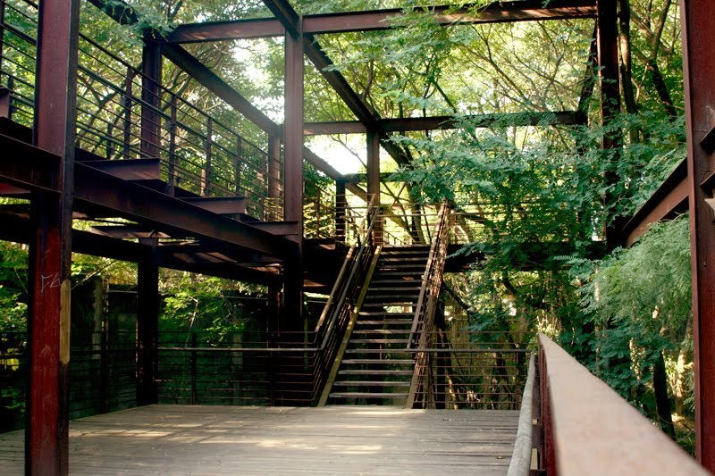 paisagistas-brasileiros-rosa-kliass-parque-da-juventude