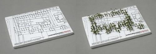 cartao-de-visita-para-arquiteto-sementes