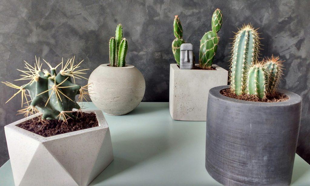 presente-para-arquiteta-vaso-concreto