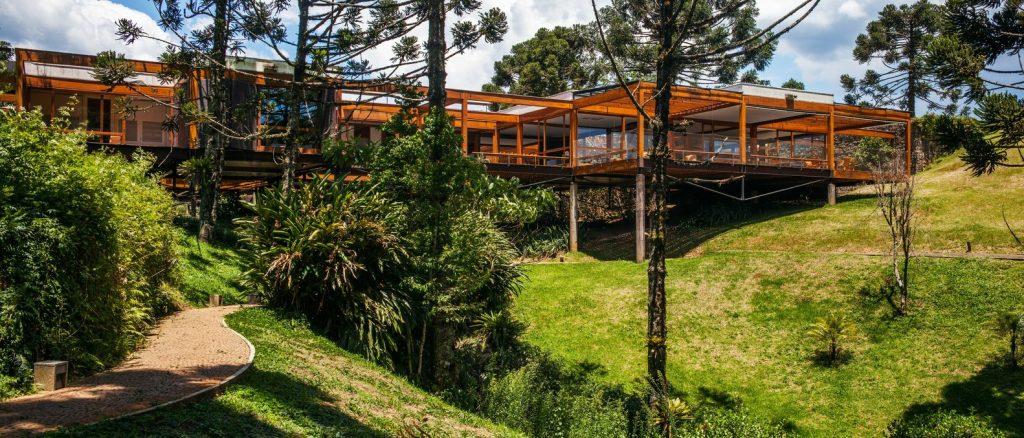 fgmf arquitetos: casa grelha - árvores araucárias