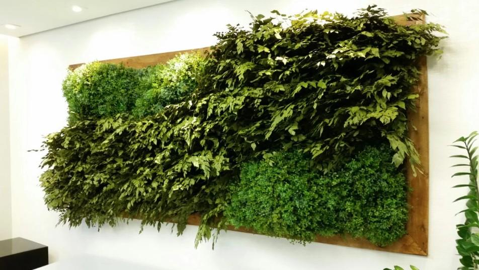 plantas-preservadas-quadro-vivo-preservado