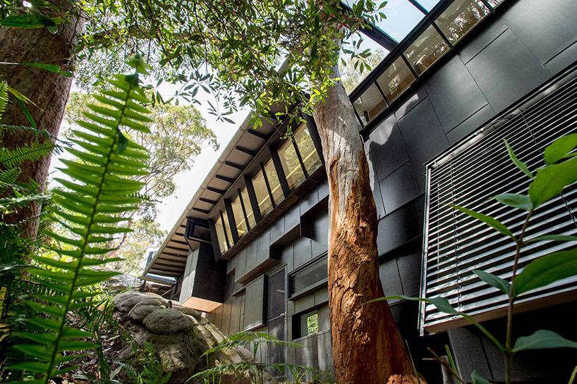 glenn-murcutt-donaldson-house