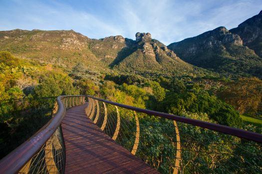 arquitetura-africana-passarela-de-aco