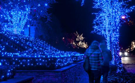 o-que-e-lighting-design-blue-christmas-light