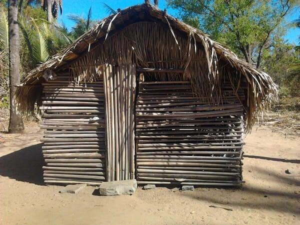Arquitetura vernacular: casa de babaçu