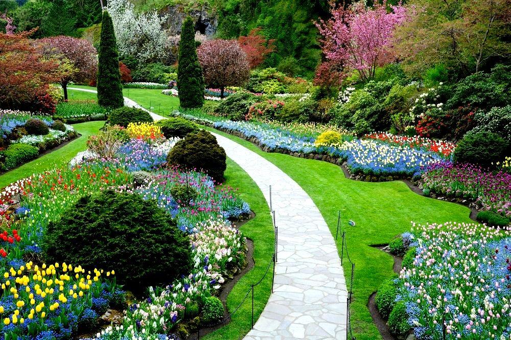 o-que-e-paisagismo-paisagismo-jardim