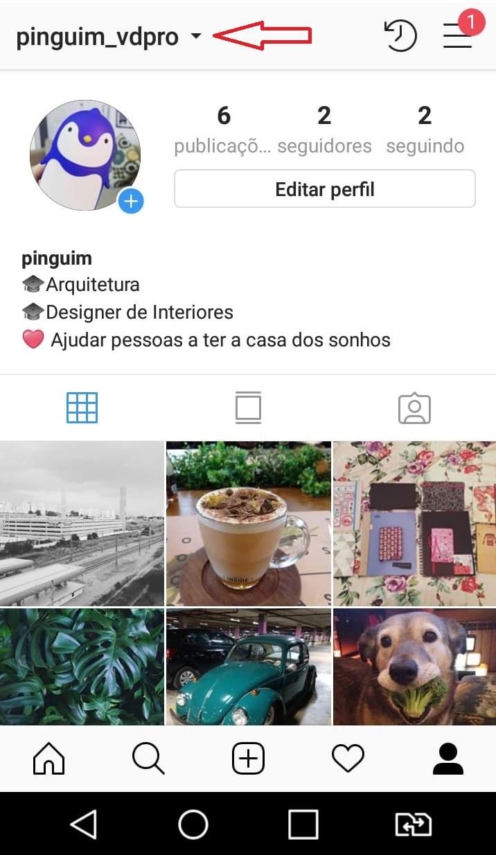 como-usar-instagram-criar-duas-contas