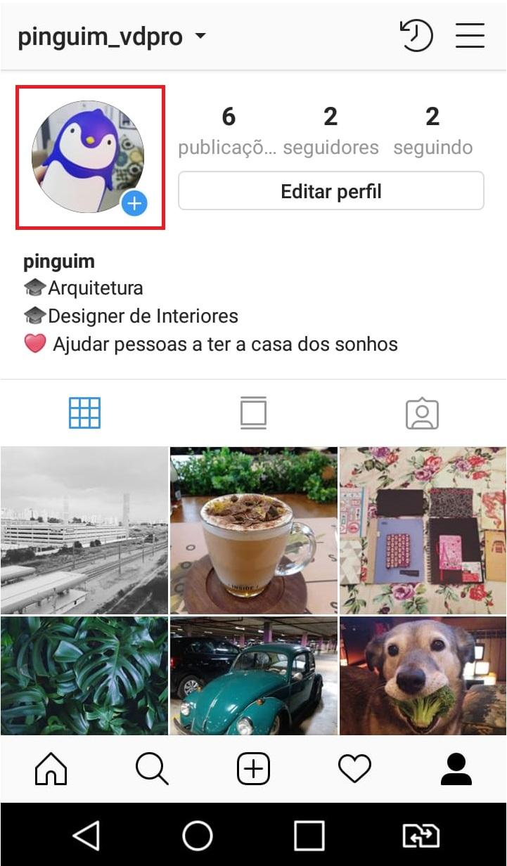 como-usar-instagram-fazendo-uma-live