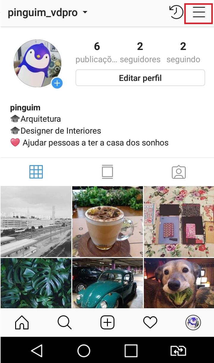 como-usar-instagram-perfil-privado