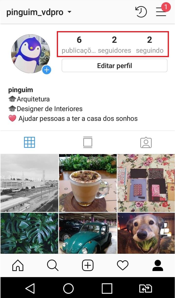 como-usar-instagram-ver-seguidores