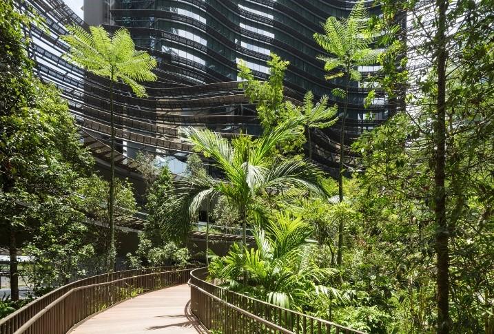 Áreas da arquitetura: paisagismo