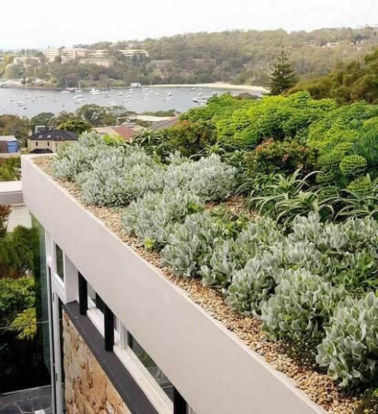 Modelos de telhados verde deixam obra mais sustentável