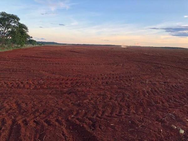 Tipos de solos: Terra Roxa