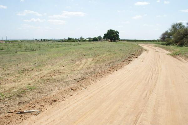 Tipos de solos: solo arenoso