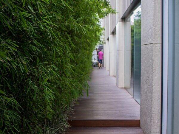 Japan House: Terraço (fonte: São Paulo sem mesmice)