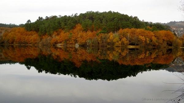 Simetria na natureza