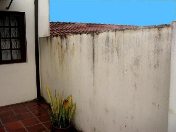 Muro sem pingadeira: mofo e umidade