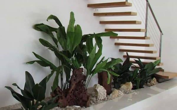 Jardim embaixo da escada: com desnível (fonte: @tenatiplantas)