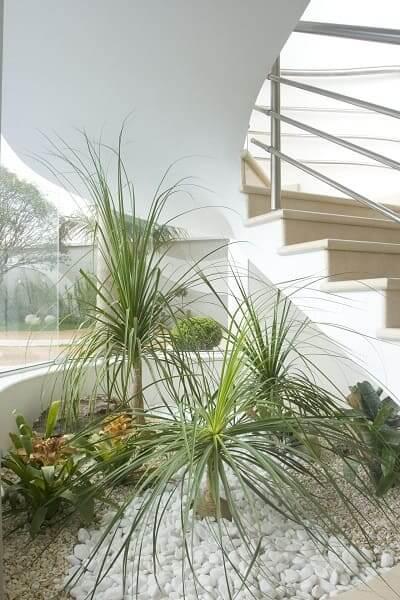 Jardim embaixo da escada: plantas grandes e sem vasos preenchem o espaço