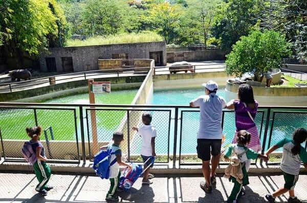 Quinta da Boa Vista: Visitantes observam o hipopótamo no Zoológico da Quinta da Boa Vista