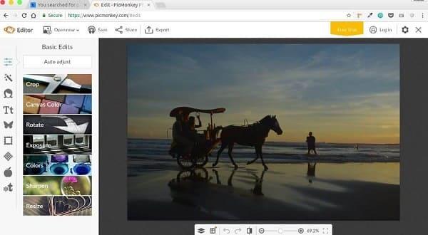 Editor de fotos profissional: Interface do PicMonkey