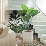 jardim-embaixo-da-escada