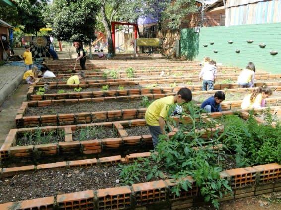 Hortas Urbanas: canteiro com tijolos