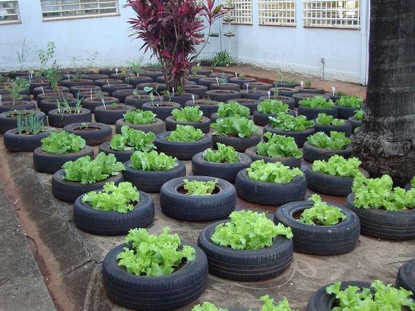 Hortas Urbanas: horta urbana feita com pneu