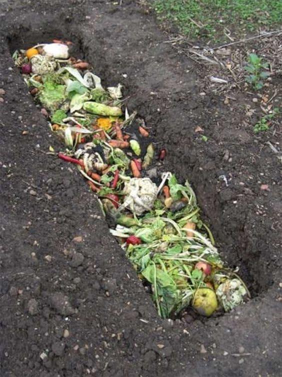 Hortas Urbanas: exemplo de compostagem com restos de alimentos