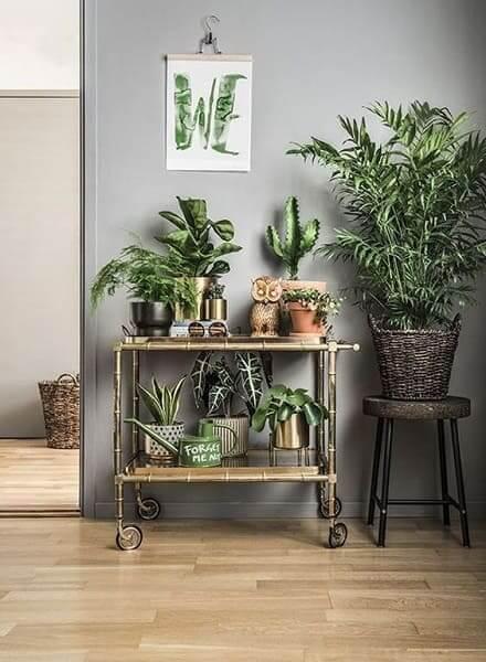 Urban Jungle: aparador de bambu ajuda a criar clima de natureza (foto: Pinterest)