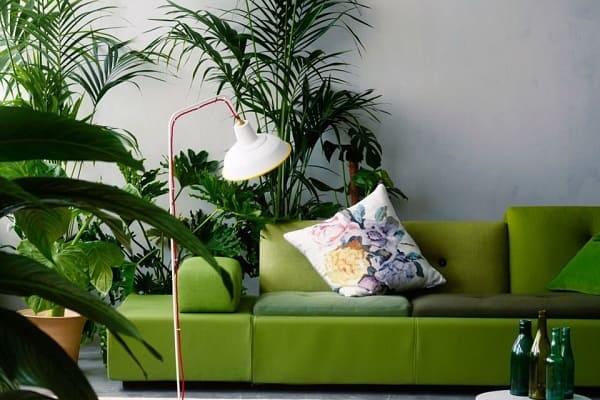 Urban Jungle: sofá e garrafas verdes (foto: Pinterest)
