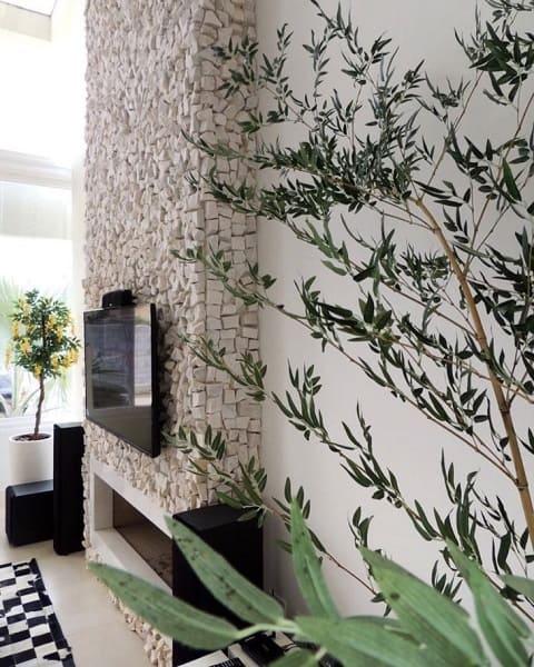 Pedra Portuguesa na lareira e plantas na decoração (projeto: Rodrigo Becker Arquiteto)