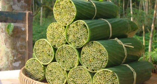 O que são materiais biodegradáveis: canudo de capim é exemplo de material biodegradável (foto: xapuri.info)