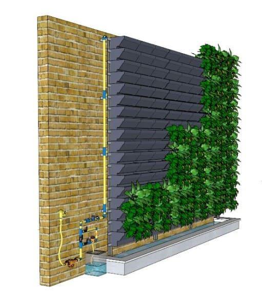 Muro verde: como regar as plantas (foto: Pinterest)