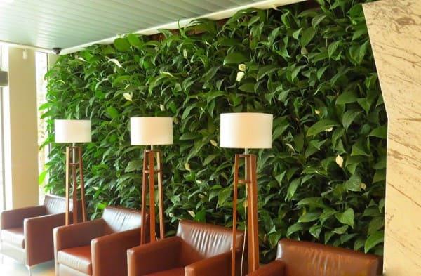 Muro verde em ambiente comercial com abajur de madeira e poltronas de couro (foto: Revista Viva Decora)