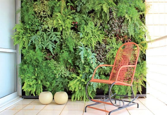 Muro verde na varanda com samambaia (foto: Pinterest)