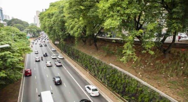 Muro verde em avenida (foto: R7)