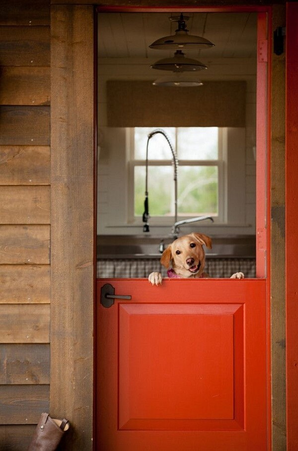 A porta holandesa evita as escapadas dos pets para fora da residência
