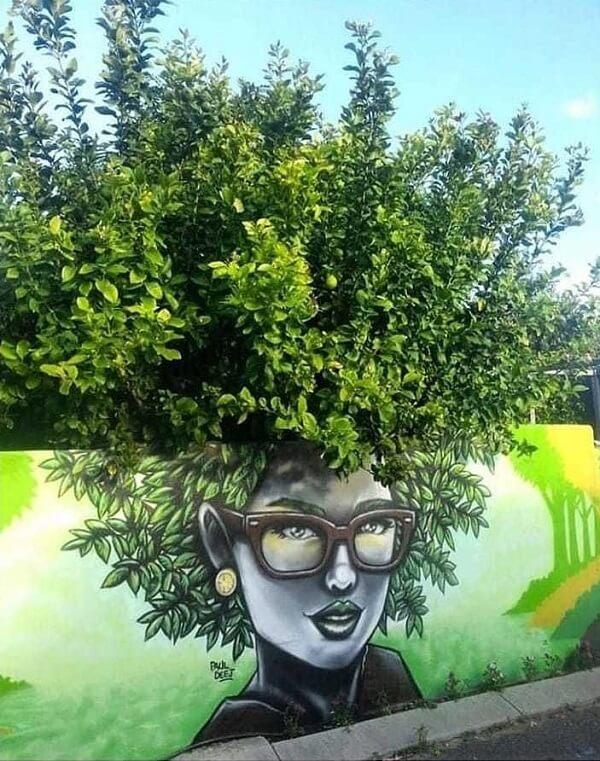 Natureza e arte urbana fundidas