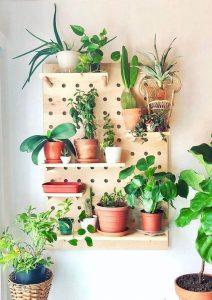 O pegboard madeira serve de suporte para diferentes vasos de plantas