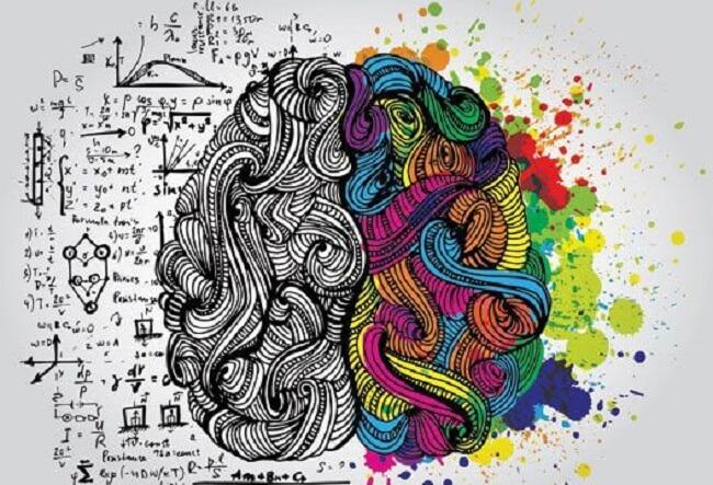A relação entre neurociência e arquitetura é tão relevante que acaba seguindo para caminhos ainda mais complexos de discussão