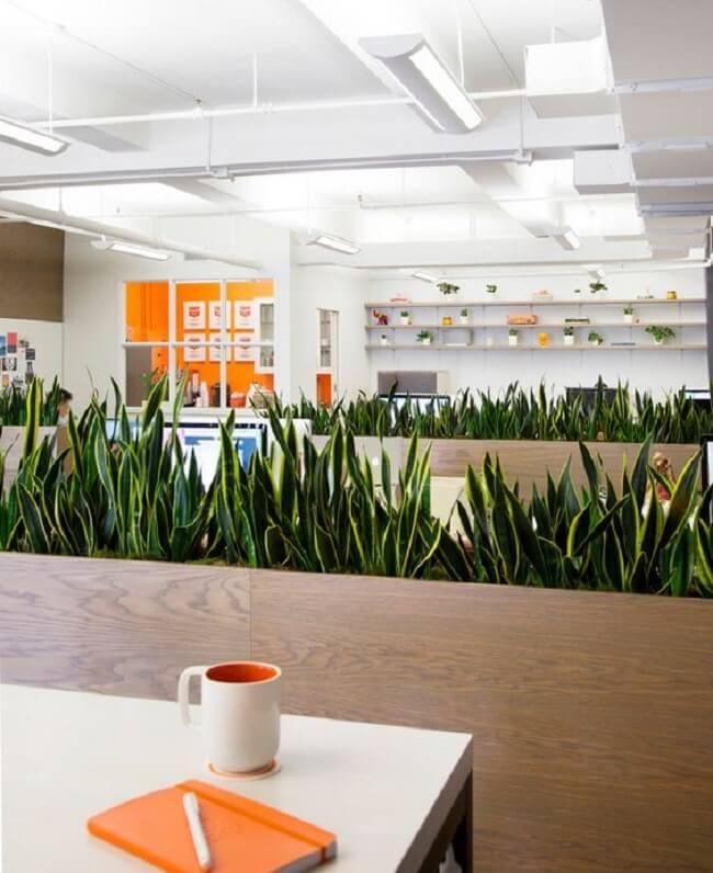 Neuroarquitetura: a presença das plantas nos espaços internos do ambiente corporativo estimulam o relaxamento dos colaboradores
