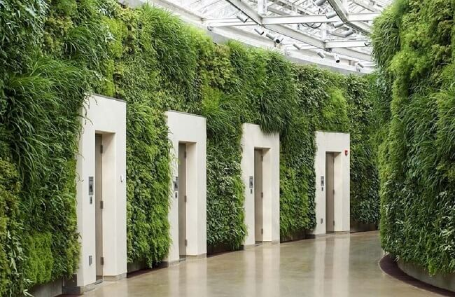 O design biofílico fez uso de paredes verdes nos corredores do edifício. Fonte: Pinterest