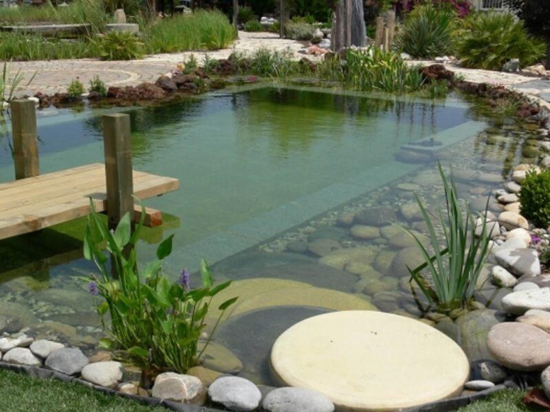 A piscina biológica é feita em duas partes: uma para banho e outra para cultivo das plantas. Fonte: Le Matin