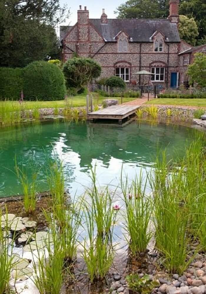 A piscina biológica também é conhecida como piscina natural. Fonte: Shelterness
