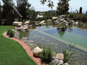 A vegetação aquática e os microorganismos são responsável por realizar a filtragem da água da piscina biológica. Fonte: Almoço de Sexta