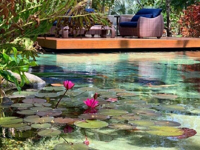 Flor de Lótus é uma das plantas que são cultivadas dentro da piscina biológica. Fonte: Genesis Ecossistemas