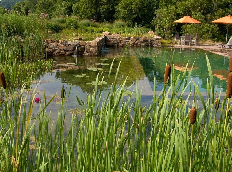 O aspecto visual de uma piscina biológica se assemelha muito com um lago ou rio. Fonte:Le Matin